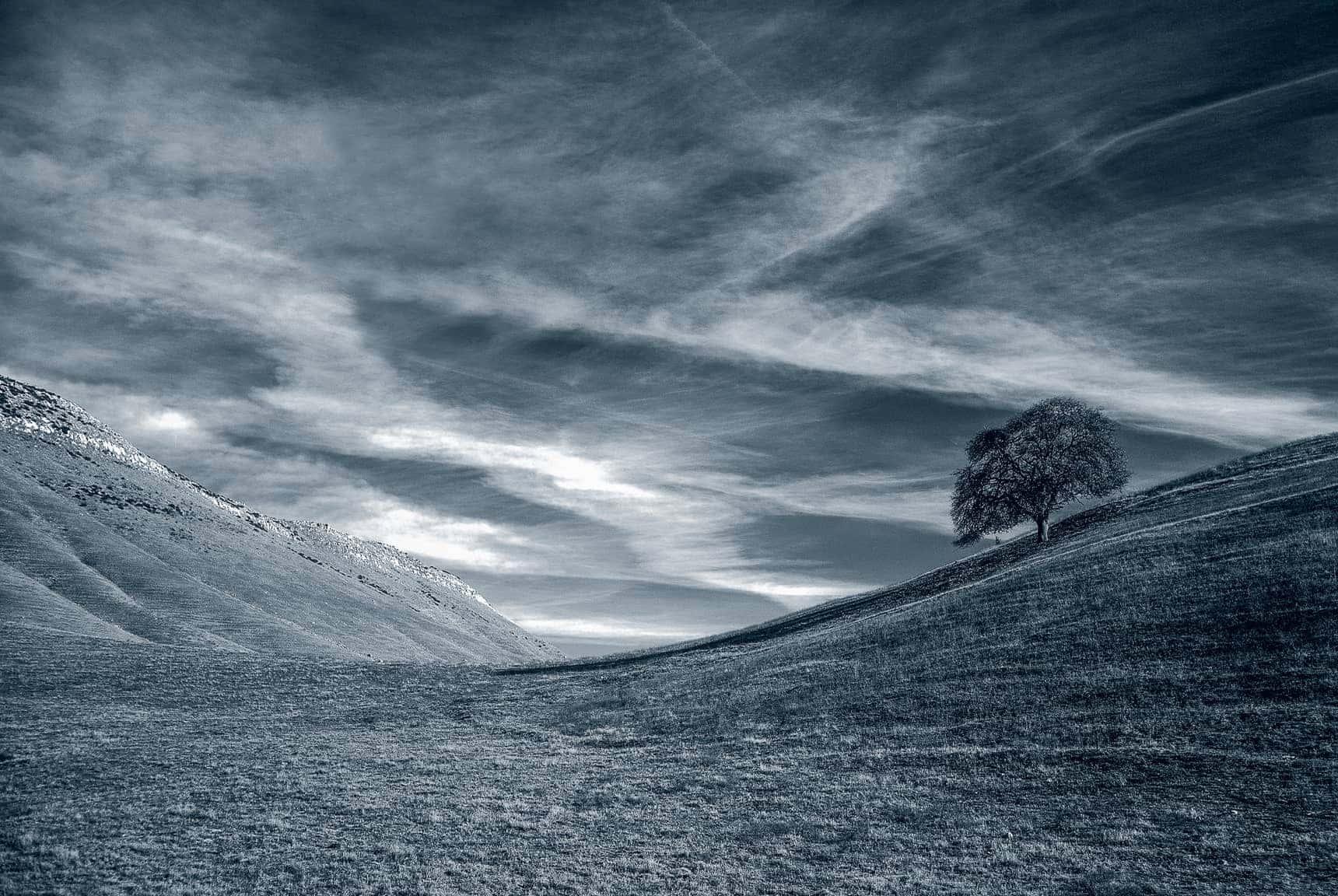 Professional Landscape Photography Large Format BW Images